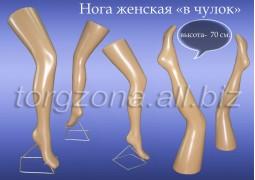 Нога женская в чулок